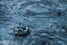 Rain.. / by Francolletta