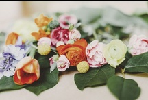 Florals / by Molly Oberstar