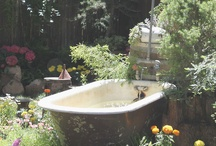 garden / by Stephanie Sharon