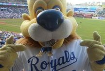 KC Sports / Chiefs, Royals, Sporting KC / by Woody's Automotive Group