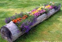 Gardening / by Kaylee Porter