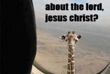 Funny!! / by Lauren Benfield