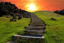 Walk on, walk on... / by Adrian Hoover