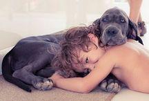 Dogs / Those great dogs / by Kolya S