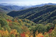 Tennessee, Home Sweet Home to Me / For some strange reason it had to be, He guided me to Tennessee / by Shanon Priest