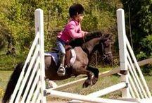 OMG Ponies <3 / by Jaquelyn