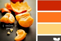 Home-Color Schemes / by Jill Prine-Fisher