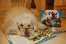 Literary Animals / by NAB Communities