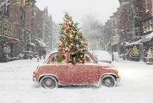 Holiday Ideas / by Tina Costolo