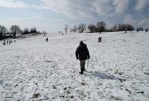 Neve a Roma - febbraio 2012 / by Antonello Sacchetti