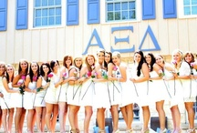 Alpha Xi Delta / The Pen is Mightier than the Sword / by Sorority World