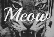* Cats make you say maauuww * / When my inner lion speaks! / by Wild at Heart