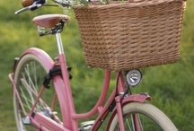Ride a Bike / by Kalina Mikova