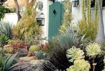 low water front yard ideas / by LeAnne Quinn