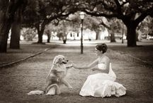 Wedding! / by Lindi Himes
