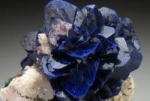 rocks and minerals / by deb brown