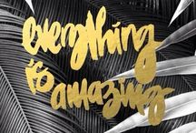 Typography & Design / by Beth Dehghanpoor