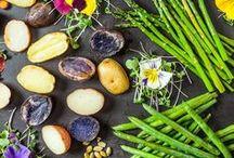 Vega Recipes / by VegaTeam