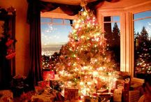 Holiday Happy. / i will deck my halls with lights and laughter and love. / by Jane Pilanski