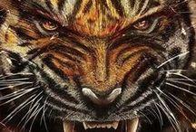GEAUX TIGERS / by Tracy N Kellie Ruddick