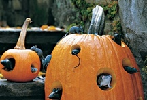 Halloween / by Shannon Semet