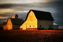 Barns, farms and country life / by Dawn Berry