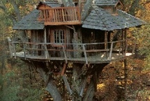 treehouses / by Sherry Firth