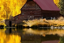 Barns and Farm Houses / by David L