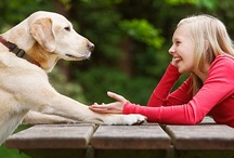 Pets & Pet Related Ideas / We are a very pet friendly store. Swing in and see our large assortment of animal products in our pet department. Bring your cat or dog with! If you have a pooch be sure to stop at the register for a doggie treat!  / by Denise Duck