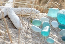Sea Glass / by Jeanette Thompson