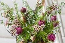 FLORAL Arrangements / Flower arrangements. / by Rebecca Hood