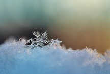 Winter / The only other sound's the sweep/ Of easy wind and downy flake. - Robert Frost / by Jennifer Annette Smith
