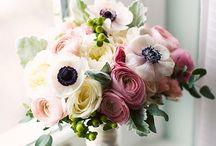 11/7/15 wedding! / by Tiffany Chin