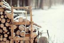 Winter / by Rachel
