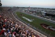 NASCAR / by Lisa Fielding