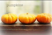 The Pumpkin Patch / by Kellie@SouthernSashay