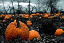 Halloween/Autumn  / by Alexis Buchinsky