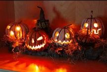Pumpkins / by Bernice Price East