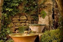 Garden / by Wanda Whitley