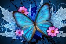 Butterflies / by Jan Tallent
