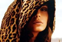 All About Leopard / by Zaida San Gil