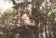 Tree Houses/Cabins / by Sarah Burton