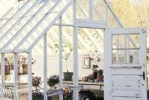 Backyard Retreats, Greenhouses, Etc / by Virginia Twedell