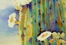 Watercolors III / by Virginia Twedell