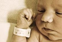 Baby Fever  / by Tara VanStippen