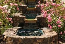 Three Coins In A Fountain... / by Gail Henderson