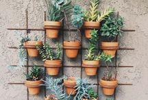 garden love / by Lauren Weintraub