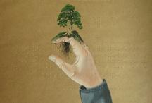 Árboles y bosques / by É a hora do te