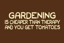 Gardening and Outdoor Ideas / by Shannon Henderson