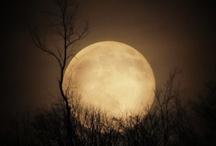 paint acry sun moon sunset / by Lila Wickham
